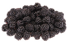 A heap of blackberries Royalty Free Stock Photo