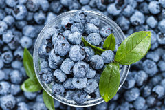 Heap of Blueberries Royalty Free Stock Image