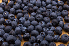 Heap of blueberries isolated on white Royalty Free Stock Photography