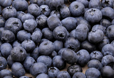 Heap of blueberries on white background Royalty Free Stock Images