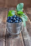 Heap of  blueberry in bucket. Fresh blueberry on wooden table Royalty Free Stock Photos