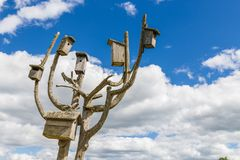 Bird boxes on wooden cured tree. Heap of boxes for birds to nest in them in summer Royalty Free Stock Photo