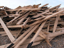 Heap of boxwood. A heap of scrap boxwood timber washed ashore Royalty Free Stock Photos