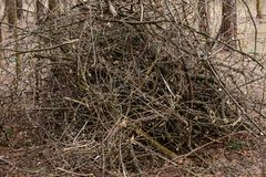 Heap of branches Royalty Free Stock Image