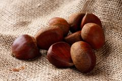 Heap of brown chestnuts on burlap Royalty Free Stock Photo