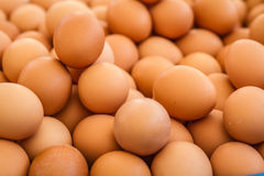 Heap of Brown Eggs Stock Images