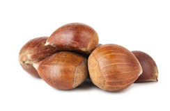 Heap of brown sweet chestnuts Stock Image