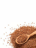 Heap of buckwheat groats and wooden spoon Royalty Free Stock Photos