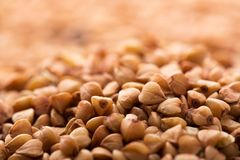 Heap of buckwheat Stock Image