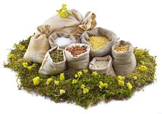 Bags on moss with flowers Royalty Free Stock Photo