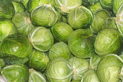 Heap of cabbage heads Stock Photo