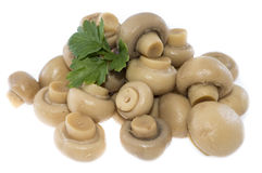 Heap of canned Mushrooms (on white) Stock Photos