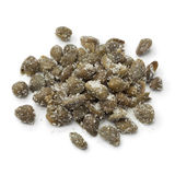 Heap of capers in salt Stock Photography