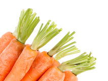 Heap of carrots Stock Images