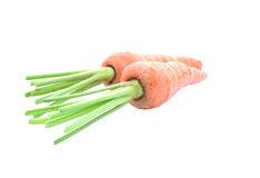 Heap of carrots isolated on white background Royalty Free Stock Photos