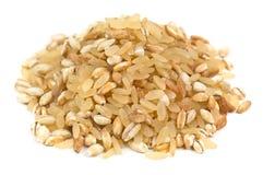 Heap of cereal grains Stock Photos
