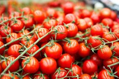 Heap of cherry tomato in supermarket Stock Images