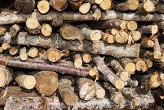 Heap of chopped fire-wood Stock Image