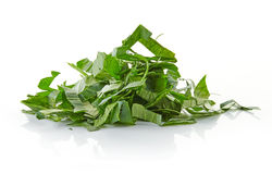 Heap of chopped parsley Royalty Free Stock Photography