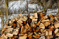 Heap of chopped wood Royalty Free Stock Photos