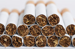 Heap of cigarettes Stock Image