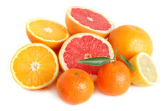 Heap of citrus Royalty Free Stock Photos