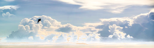 Heap cloud sky panorama view and flying bird Stock Photos