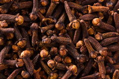 Heap of cloves. A heap of cloves on dark background Stock Photo
