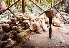 Heap of coconut shells Royalty Free Stock Photography