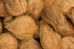 Heap of coconuts Royalty Free Stock Photography
