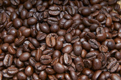 Heap of coffee beans Royalty Free Stock Photo