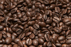 Heap of coffee beans Stock Image