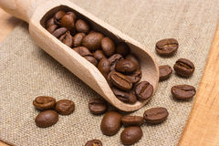 Heap of coffee beans with wooden scoop on jute canvas on table Stock Image