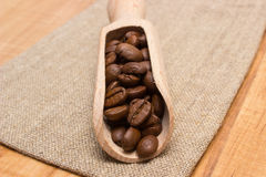 Heap of coffee beans with wooden scoop on jute canvas on table Royalty Free Stock Image