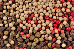 Heap of colored pepper Royalty Free Stock Photos