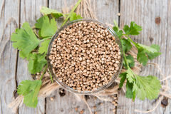 Heap of Coriander (seeds) Royalty Free Stock Photo
