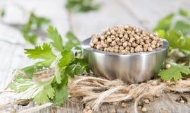 Heap of Coriander (seeds) Stock Photos