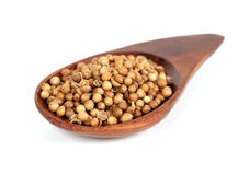 Heap coriander seeds Royalty Free Stock Photography