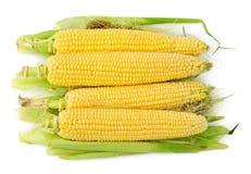 Heap of corns on the cob Royalty Free Stock Photos