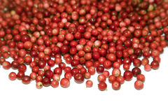 Heap of cranberry Stock Image