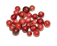 Heap of cranberry Royalty Free Stock Photography