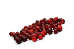 Heap of a cranberry on the white Stock Image