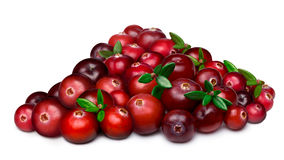 Heap of cranberry Royalty Free Stock Images
