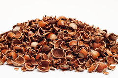 Heap of crushed hazelnut shells Stock Images