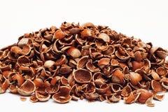 Heap of crushed hazelnut shells Stock Images