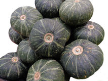 Heap of dark green tropical pumpkins Royalty Free Stock Photography