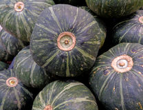 Heap of dark green tropical pumpkins at the local market in Thailand Royalty Free Stock Photography