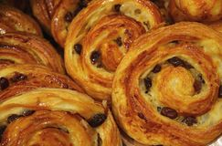Heap of Delectable Raisin Cinnamon rolls lined up on the Tray. Selective Focus royalty free stock photography