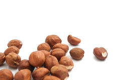 Heap of delicious hazelnuts. Heap of tasty hazelnuts closeup on white background royalty free stock images