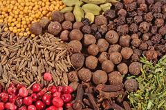 Heap of different dry spices Stock Photos